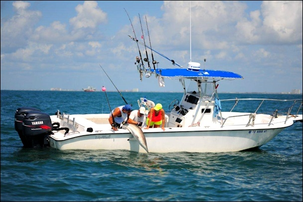 Galveston fishing guides captain mike williams and the for Galveston fishing charter
